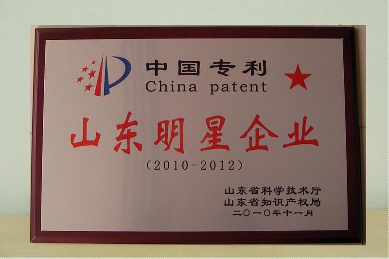中国专利山东明星企业